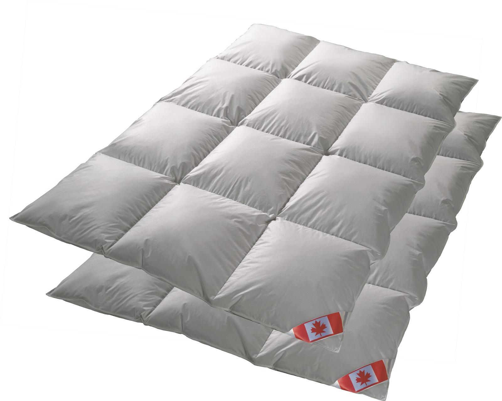 Angebot 2 Canada Kassetten Daunendecken extra warm Winterdecke 100% Daune 135x200 cm C5