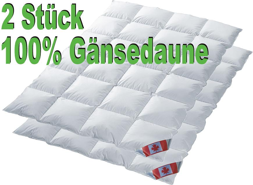 Set 2x Polaris Premium Ganzjahresdecke 100% Gänsedaune Daunendecke 135x200 cm P3