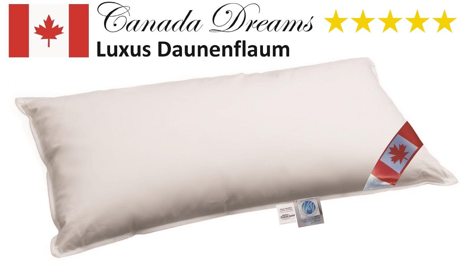 Premium Air Cell 3-Kammer Kissen Stützkern außen 100% Daune 40x80 cm